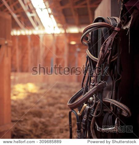 皮革马缰绳和少量挂在墙壁上的紫外线稳定