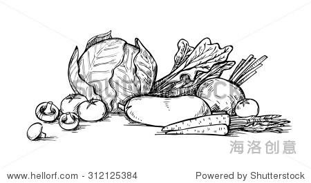 手绘插图,蔬菜.超市.杂货店.有机和纯素食食物.