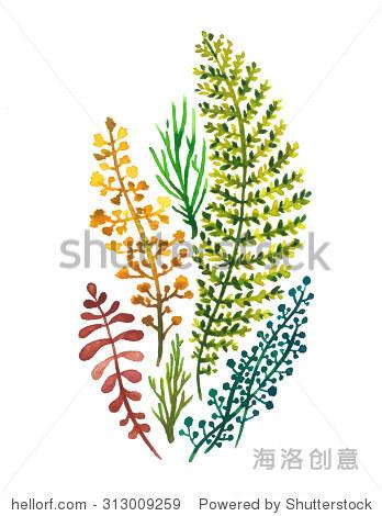 五颜六色的水彩春天树叶在白色背景.手画在纸上