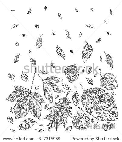 森林的树叶.向量.手绘艺术作品.设置集合.