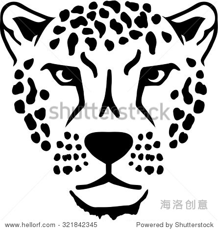 豹子头-动物/野生生物-海洛创意正版图片,视频,音乐-.