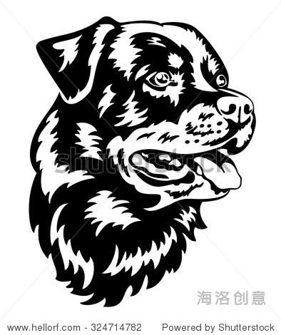 罗特韦尔犬狗头黑白插图孤立-动物/野生生物-海洛创意