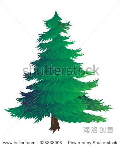 云杉的矢量插图
