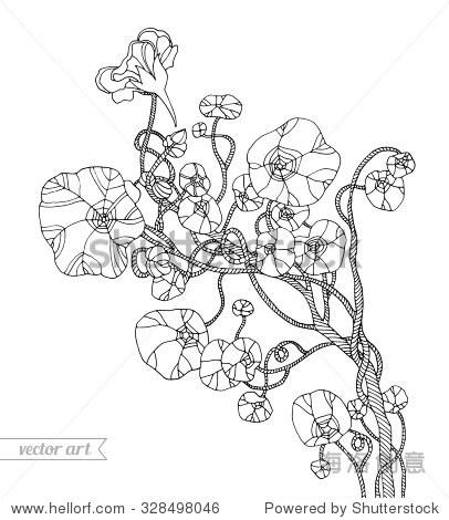 森林的丛林植物,热带藤本植物.向量.zentangle.手绘艺术作品.