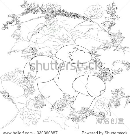 在秋天蘑菇森林 - 背景/素材,自然 - 站酷海洛创意,,.