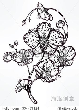 兰花花纹身图案分享展示