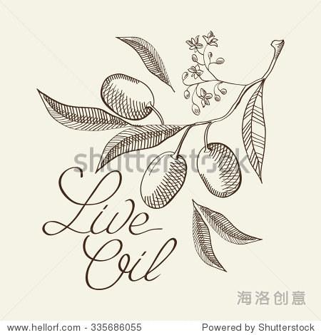 橄榄树.手绘背景.复古风格.向量插图,eps10,包含透明胶片.