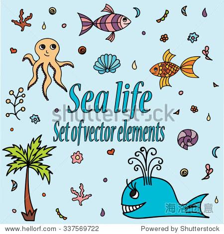 可爱的水生生物.手绘插图与贝壳