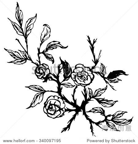 向量黑白手绘花
