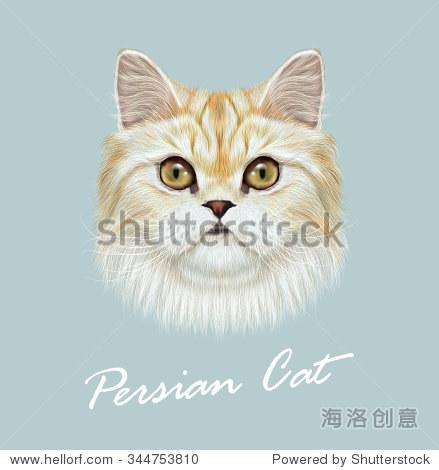 蓝色背景上可爱的家猫