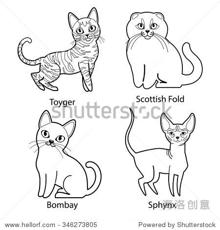 手绘坐着的猫图
