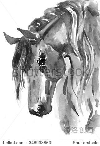 马的头.黑白水彩插图.