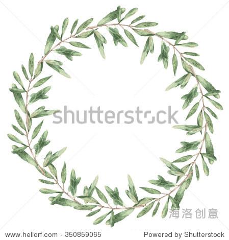 橄榄树花环水彩的一个分支