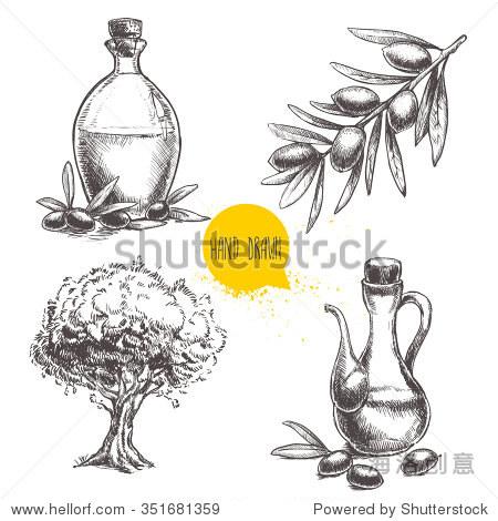 手绘的橄榄枝橄榄,瓶橄榄油和橄榄树.有机食品说明素描风格向量.