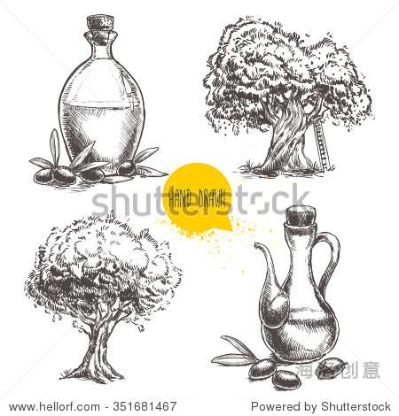 手绘的橄榄树和瓶橄榄油.素描风格生态食品矢量插图
