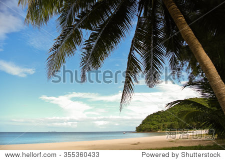 泰国南部海滩上椰子树. - 背景/素材,自然 - 站酷海洛