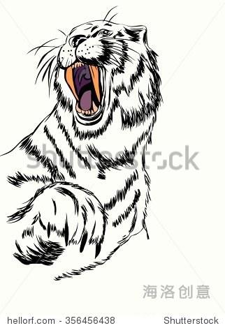 素描的老虎头张口