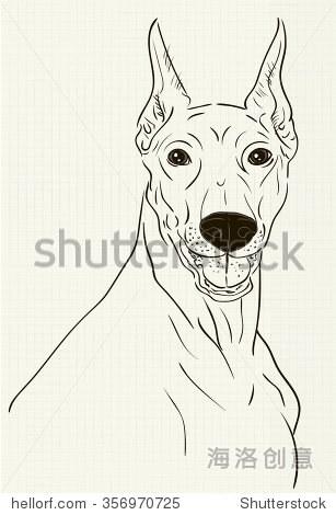 向量杜宾犬墨水画在笔记本上