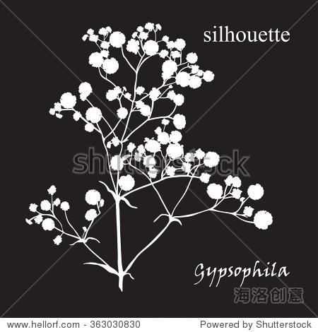 手绘满天星简笔画-Branch of beautiful hand drawn silhouette gypsophila