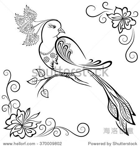 手绘简笔画鸟色彩