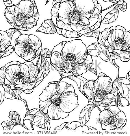 black and white flowers山茶花.vector seamless式樣