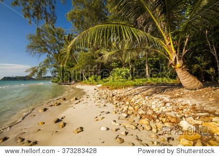 美丽的热带沙滩和椰子树.koh张.泰国.