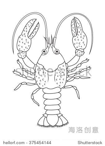 小龙虾,矢量插图.