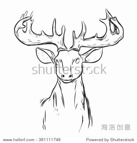 鹿头动物的象征.刻孤立的向量.手绘图形.孤立在白色背景上.