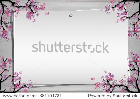 木板的照片和铭文.樱花树枝.弹簧边界或框架.启发板.