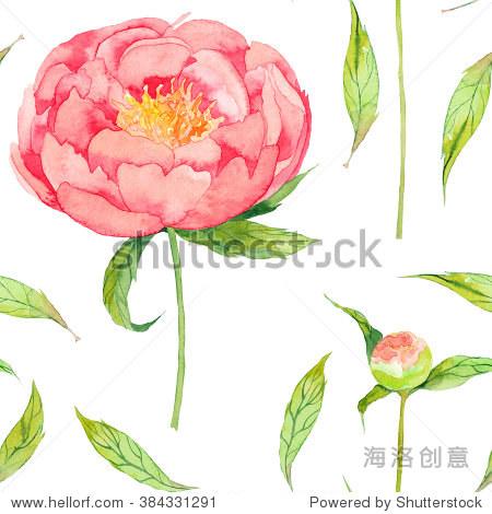 春天的花儿用树叶牡丹水彩无缝模式.手绘插图