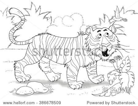 在动物园里.非洲动物.一个可爱的老虎正在看一只小鸟.