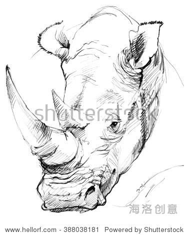 犀牛铅笔素描. - 动物/野生生物,艺术 - 站酷,,.