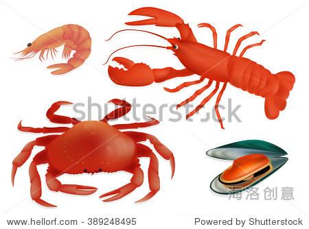 集海鲜贻贝,虾,龙虾和螃蟹.矢量图