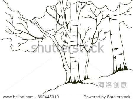 四桦树的自然卡通手绘插图,彩色书页面