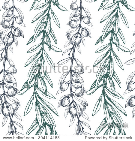 奥运橄榄枝的含义-Olive branches seamless pattern. Long decorative 图片