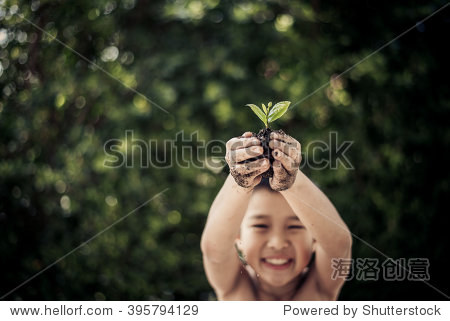 Dark color tone. Selective focus on plant  Child holding young seedling plant in hands tree bokeh background. Concept Earth day