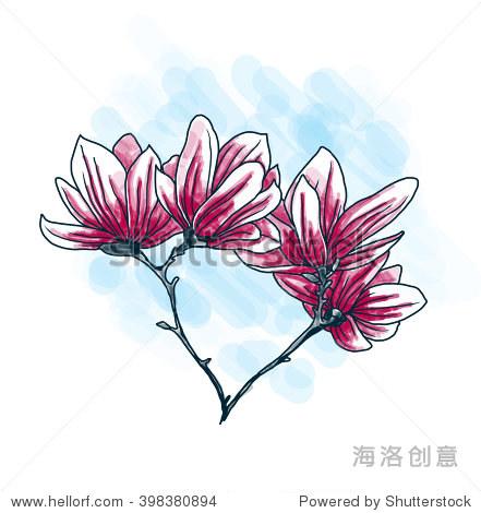 美丽的白玉兰花手绘风格 - 艺术,自然 - 站酷海洛创意