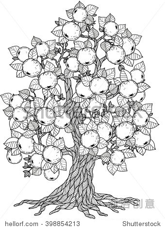苹果树简笔画-Apple Tree. Coloring Book For Adult. Doodles For Meditati