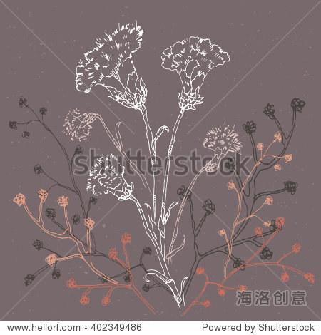 线性手绘草图的康乃馨花纹理背景.矢量彩色插图丁香粉红色的分支.