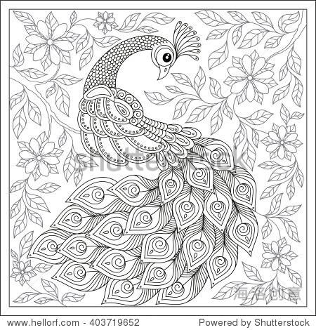 奇异鸟,神奇的花,叶子.复古手绘图案的黑色和白色的涂鸦孔雀.