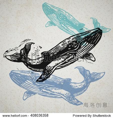 老纸浮雕鲸鱼在不同的颜色