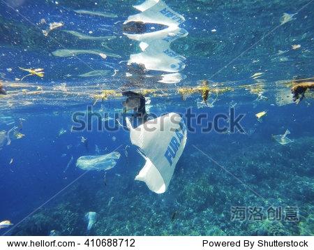 塑料海洋污染 - 动物/野生生物,自然 - 站酷海洛创意