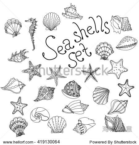 海贝壳,海星,贝壳,鹦鹉螺海海洋水生动物水下本色的向量集.
