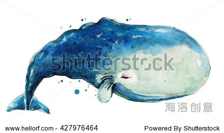 一个大蓝鲸.水彩鲸鱼绘画.手绘鲸鱼