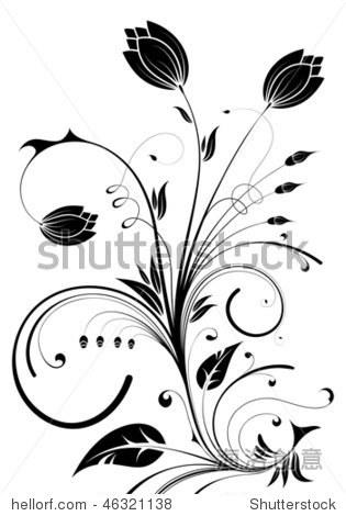 与花蕾,花为设计元素,矢量插图