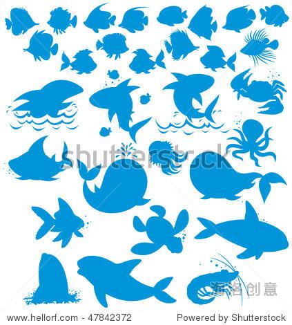 轮廓的海洋动物-插图/剪贴图