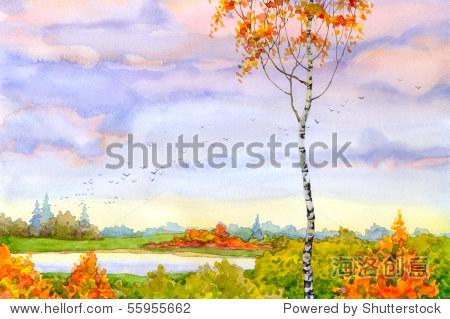 水彩风景.孤独的桦树看着秋天的距离