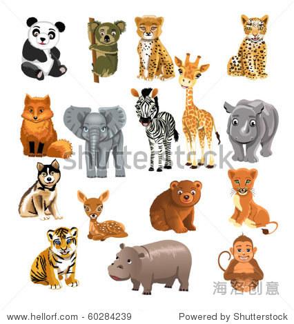 的可爱的动物-动物/野生生物