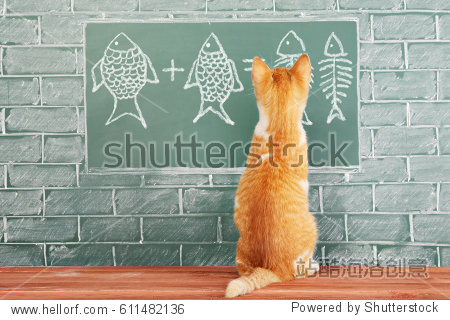 Education idea about foxy Cat studied mathematics on example of addition of fish