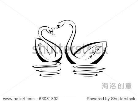 一对天鹅在水里反映出来